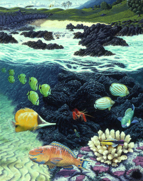 Annenberg Painting - Kipahulu Shores by Andrew Annenberg