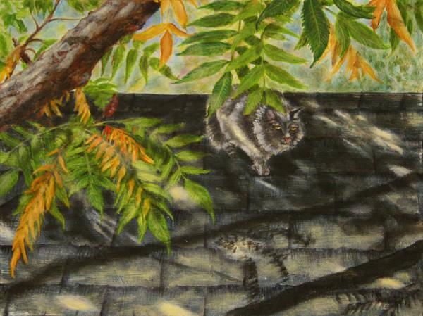 Kirby Stalking Art Print by Karen Peterson
