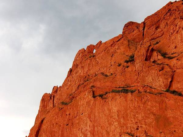 El Paso County Photograph - Kissing Camels by Connor Beekman