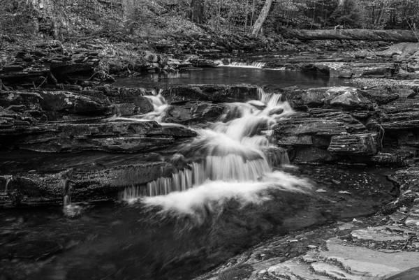 Photograph - Kitchen Creek - 8902 by G L Sarti