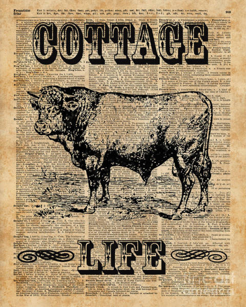 Wall Art - Digital Art - Kitchen Decor Cottage Life Cow Vintage Artwork by Anna W