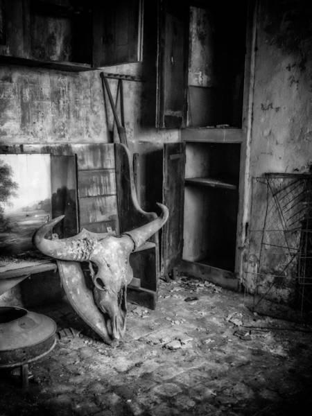 Photograph - Kitchen Skulduggery  by Nick Bywater