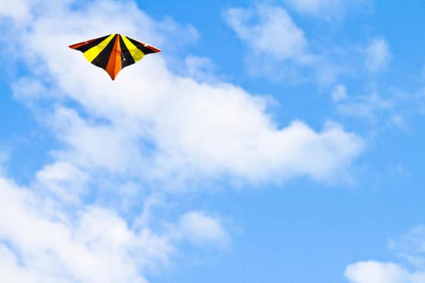 Kite Photograph - Kite by Anya Brewley schultheiss