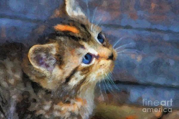 Digital Art - Kitten Watercolor by Jill Lang