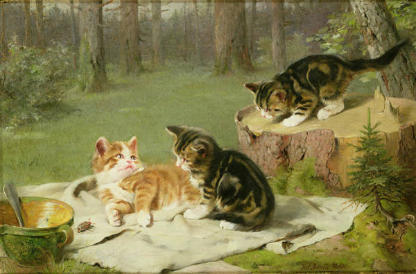 Kitten Play Wall Art - Painting - Kittens Playing by Ewald Honnef
