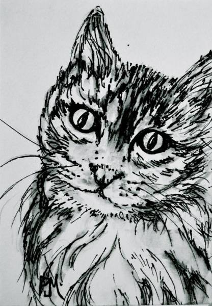 Thumbnail Painting - Kitty Cat by Pete Maier