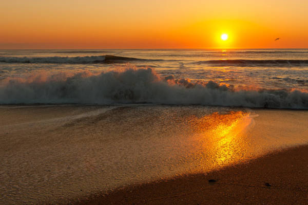 Photograph - Kitty Hawk Sunrise by Brenda Jacobs