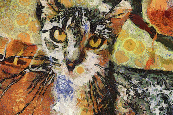 Photograph - Kitty Kat Vangoghed by Alice Gipson