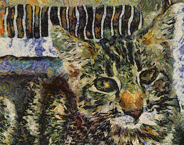 Photograph - Kitty Vangoghed by Alice Gipson