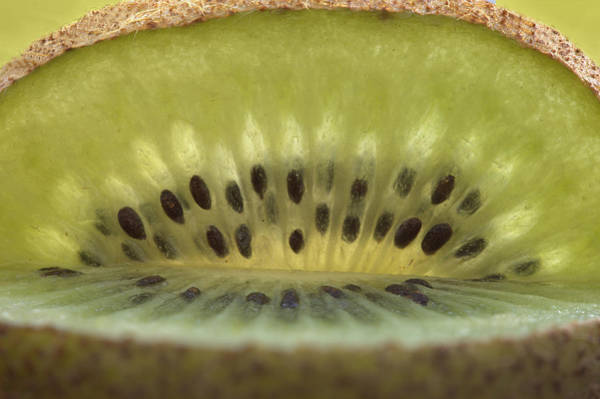 Kiwifruit Photograph - Kiwi Fruit Macro by Mark Duffy