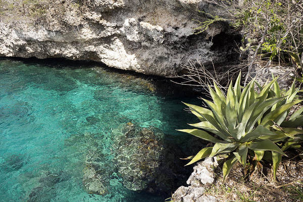 Photograph - Kleine Knip Curacao by For Ninety One Days