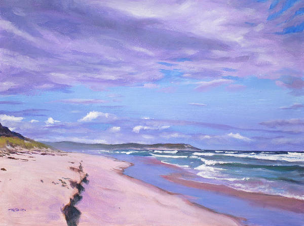 Painting - Kleinmond Beach by Christopher Reid