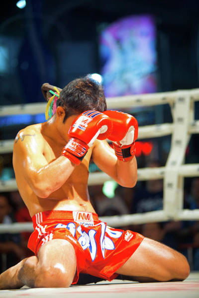 Kickboxing Photograph - Kneeling Muay Thai Gloves Face by Pius Lee