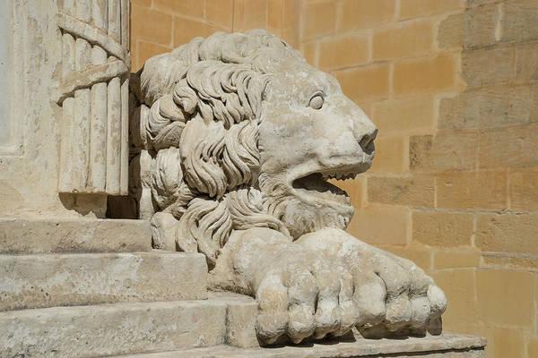 Photograph - Knights Of Malta Legacy Guardian - Regal Lion Sculpture by Georgia Mizuleva