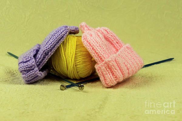 Photograph - Knitting by Michael D Miller