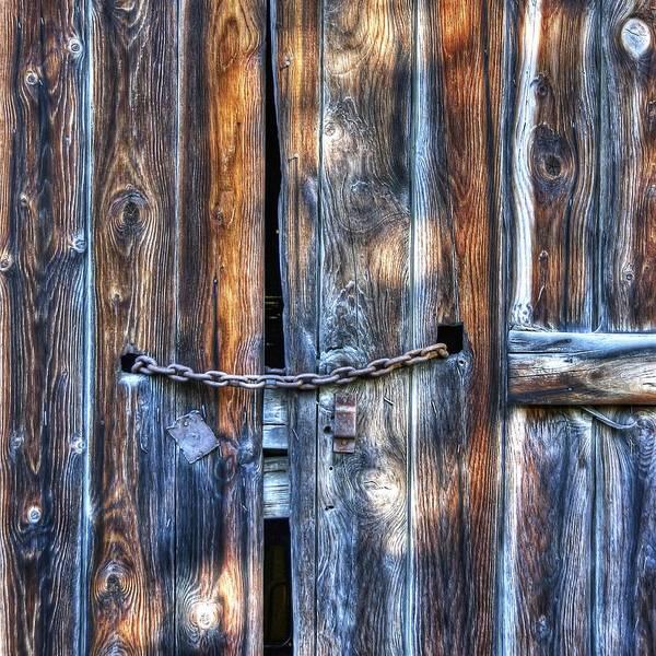 Wall Art - Photograph - Knotty by Wayne Sherriff