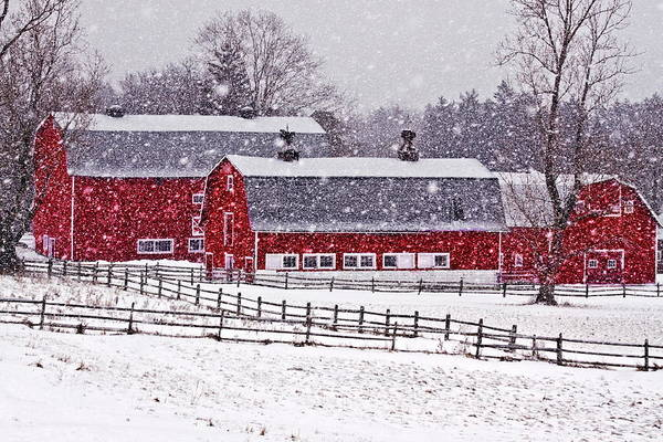 East County Photograph - Knox Farm Snowfall by Don Nieman