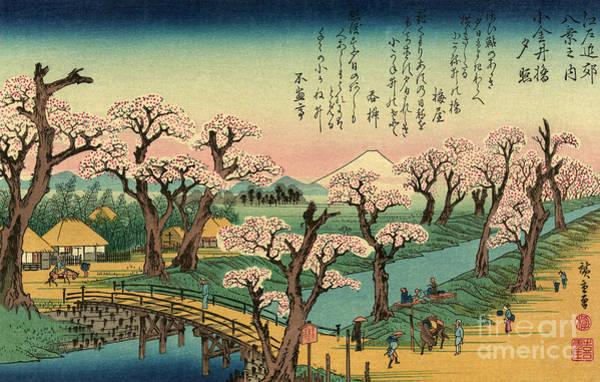 Japanese Poetry Painting - Koganeibashi No Sekisho - Evening Glow At Koganei Bridge by Utagawa Hiroshige