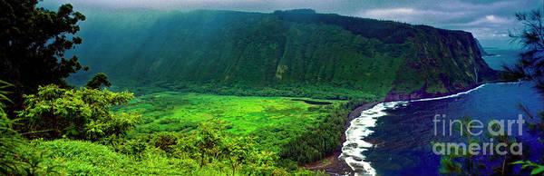 Photograph - Kohala Forest Preserve Waipio Valley Look Out Big Island Hawaii by Tom Jelen