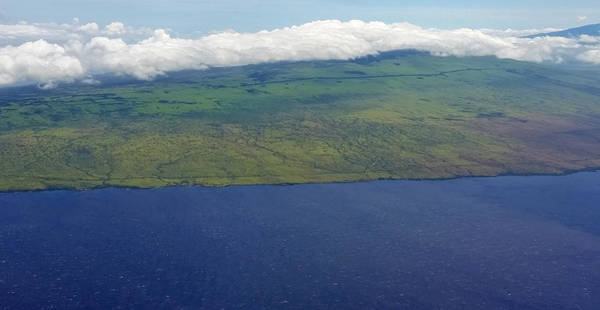Photograph - Kohala Mountain by Pamela Walton