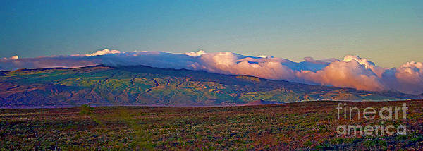 Photograph - Kohala Mountains - Big Island by Bette Phelan