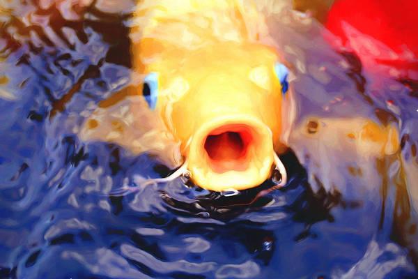 Ornamental Fish Photograph - Koi Ahoy by Fbmovercrafts
