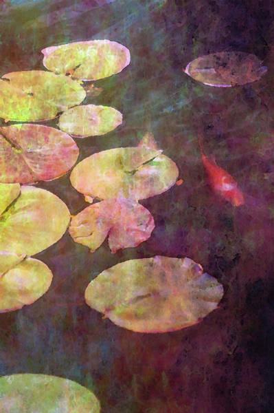 Photograph - Koi And Lily Pads 2578 Idp_2 by Steven Ward