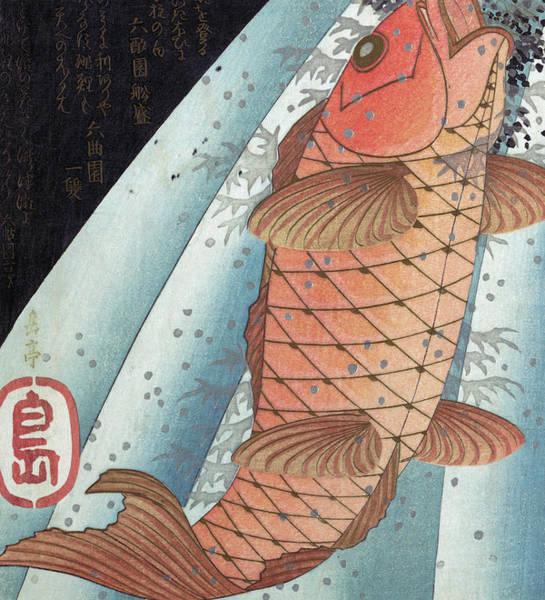 Wall Art - Painting - Koi Carp by Japanese School