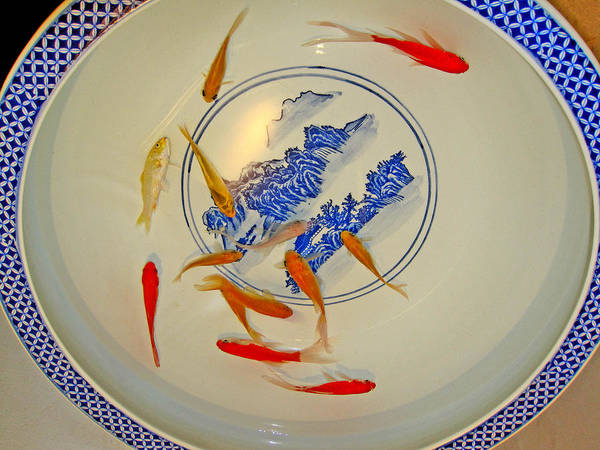 Made In Japan Wall Art - Photograph - Koi. Chinese Porcelain. by Andy Za
