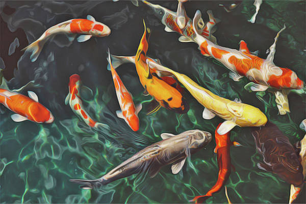 Painting - Koi by Harry Warrick