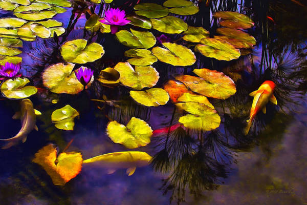 Photograph - Koi Pond by Brian Tada