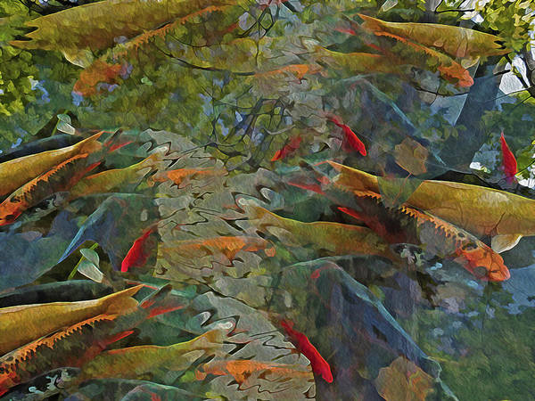 Mixed Media - Koi Pond With Reflections 9 by Lynda Lehmann