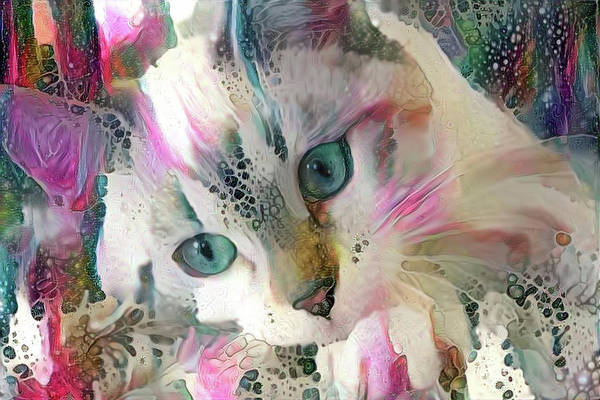 Digital Art - Koko The Siamese Kitten by Peggy Collins