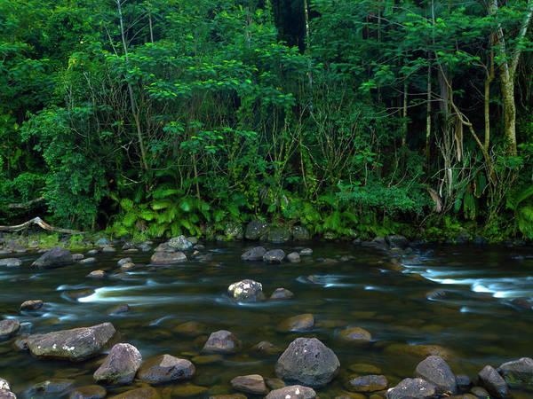 Photograph - Kolekole Stream by Christopher Johnson