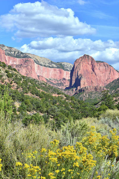 Photograph - Kolob Canyons Of Zion by Ray Mathis