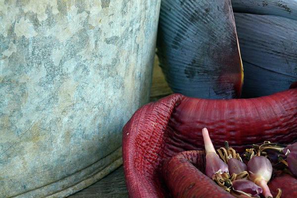 Photograph - Kona Coffee Living History Farm Kitchen Scene by Bruce Gourley