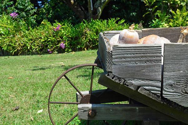Photograph - Kona Coffee Living History Farm Wheelbarrow by Bruce Gourley