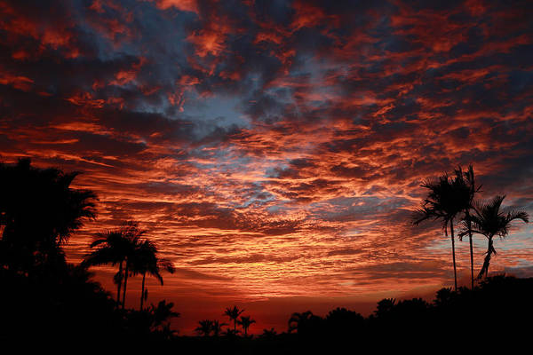 Photograph - Kona Fire Sky by Denise Bird