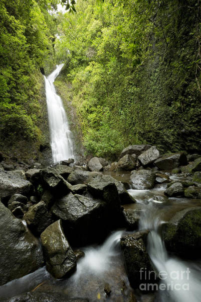 Photograph - Ko'olau Mountain Waterfall by Charmian Vistaunet