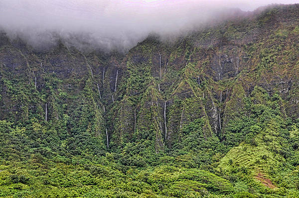 Ko'olau Waterfalls Art Print