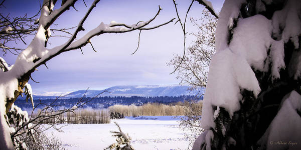 Photograph - Kootenai National Wildlife Refuge by Albert Seger