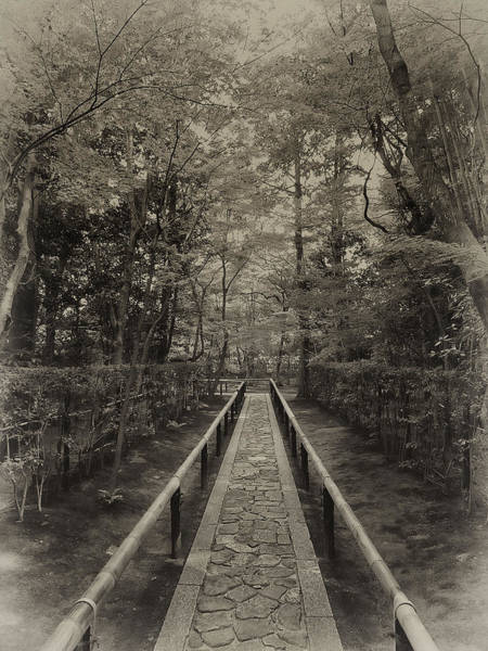 Kansai Wall Art - Photograph - Koto-in Zen Temple Forest Path - Kyoto Japan by Daniel Hagerman