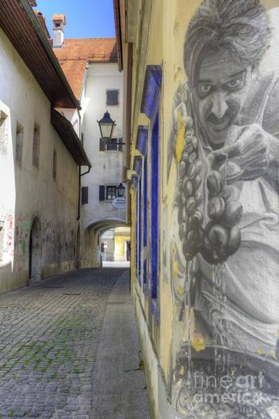 Wall Art - Photograph - Kranj, Slovenia by Juli Scalzi