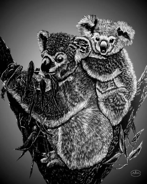 Panda Drawing Painting - Koala Mother And Baby by Ron Chambers