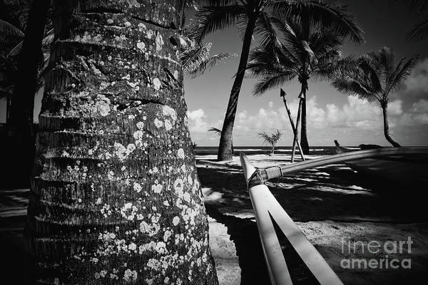 Photograph - Kuau Beach Palm Trees And Hawaiian Outrigger Canoe Paia Maui Haw by Sharon Mau