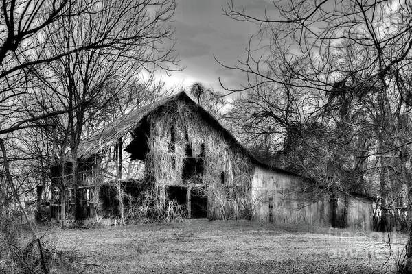 Lowry Photograph - Kudzu Covered Barn In The Mississippi Delta by T Lowry Wilson