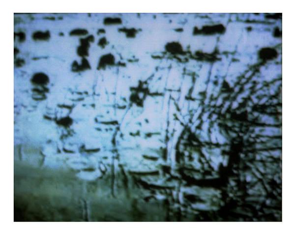 Digital Art - Kuhle Wampe 1b by Doug Duffey