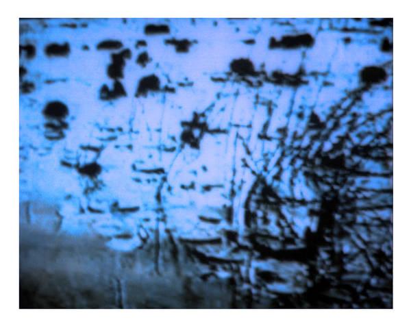 Digital Art - Kuhle Wampe 1x by Doug Duffey