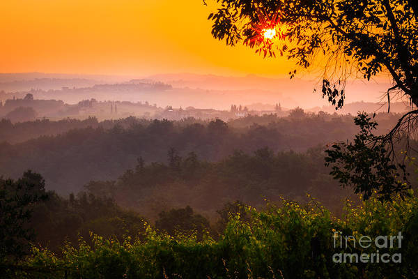 Italian Wine Photograph - La Bella Toscana by Inge Johnsson
