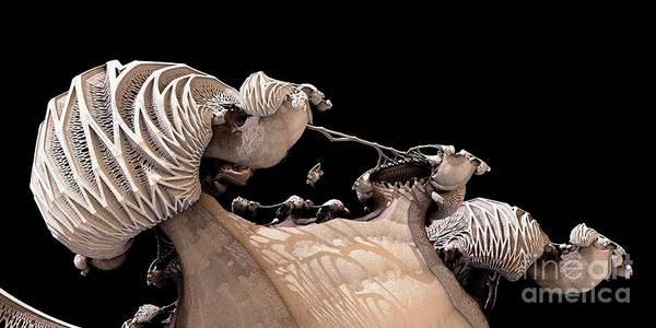 Digital Art - La Familia by Jon Munson II